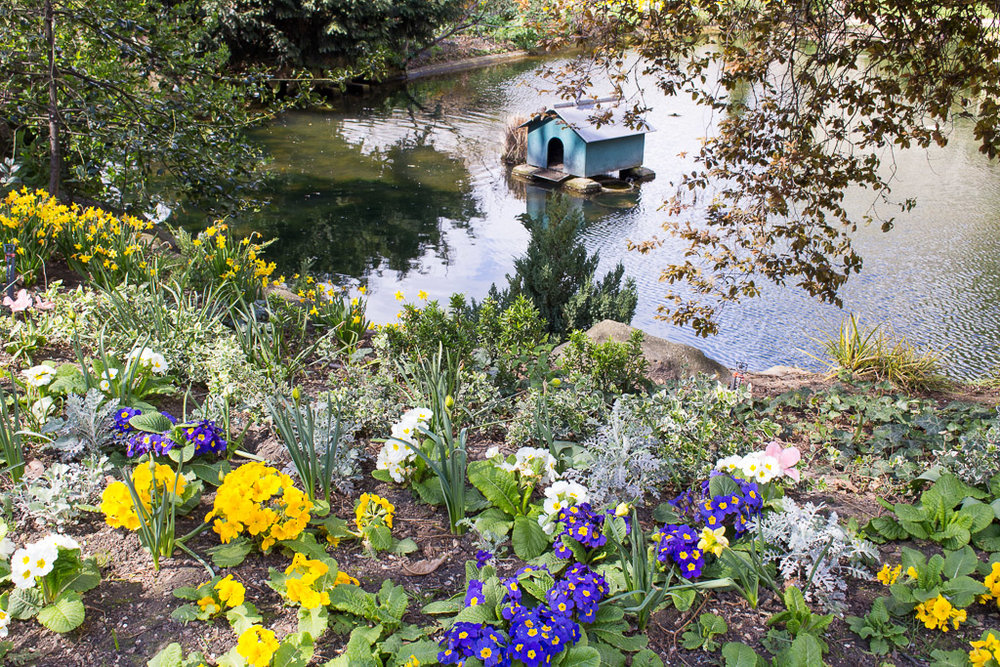 The cutest little pond we came across while strolling through Marais.