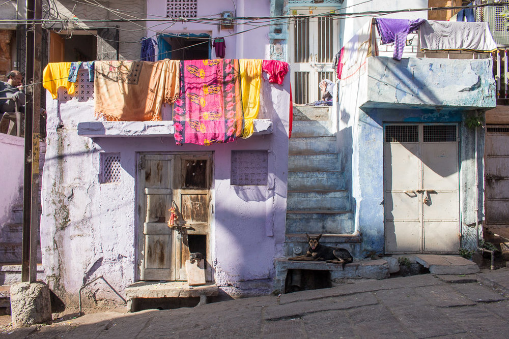 This is one of my favorite pictures from Jodhpur because it shows real life in India. Can you spot the little puppy?