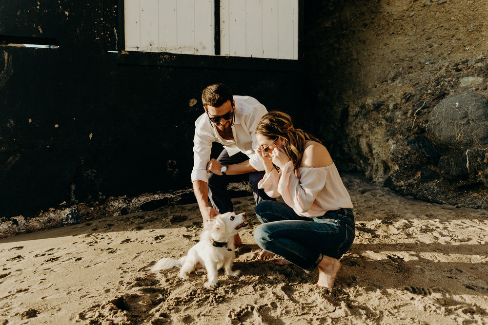 TBP Tip: Victoria Beach is dog friendly! We didn't invite  @maxtheterrier  to join in on our engagement shoot, but this cute little guy made it into one of our photos.