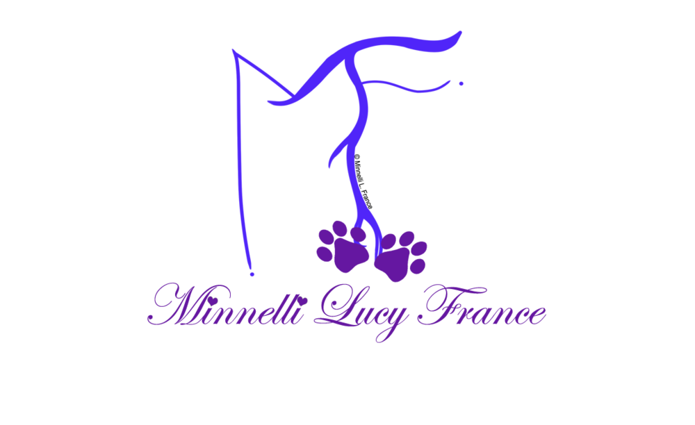 MLF MINNELLI LUCY FRANCE - CONTEMPORARY WILDLIFE ARTIST LOGO COPR. 2018.png