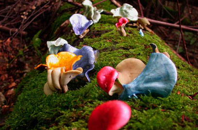 Painted Mushrooms (#60),  2002  Photograph