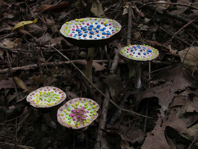 Painted Mushrooms (Illinois),  2003  Photograph