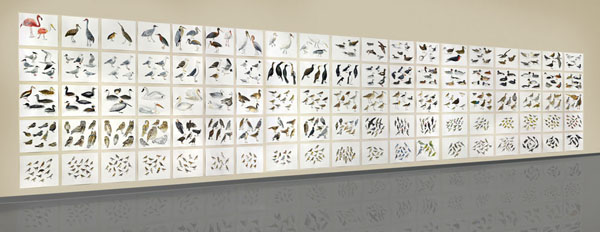 "Post-Audubon, Birds of North America, left, one-third of installation,  2008  103"" x 154"", 95@ 19"" x 24"" Sharpie/watercolor on paper"