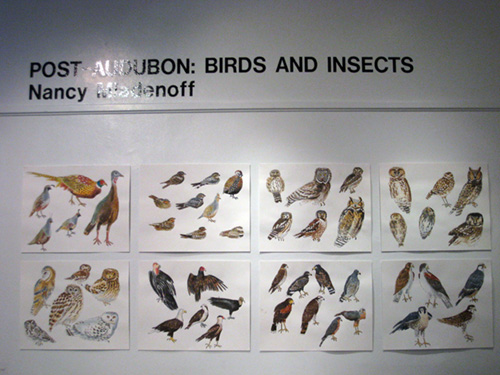 Post Audubon: Birds & Insects,  2009  Arsenal Gallery in Central Park  New York, NY