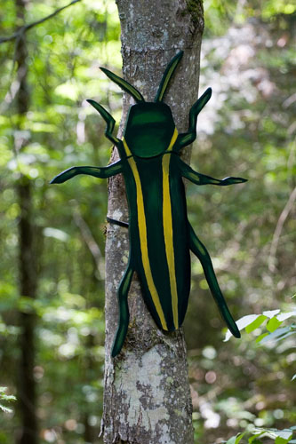Two-lined Chestnut Borer (native & invasive),  2007  Enamel on plywood  Forest Art Wisconsin, Northern Highland-American Legion State Forest