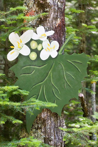 Garlic Mustard (invasive),  2007  Enamel on plywood  Forest Art Wisconsin, Northern Highland-American Legion State Forest