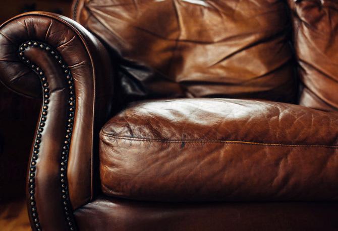 corgi-spirits-the-lounge.jpg
