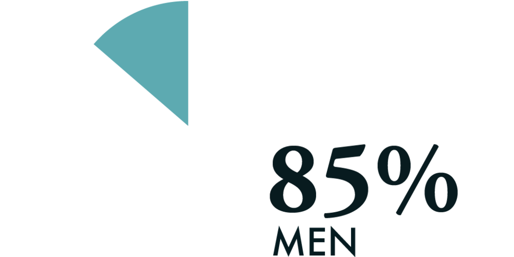 design and innovation professionals are 85% male