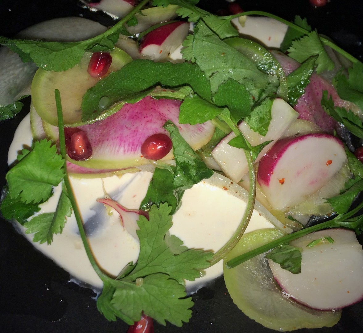 Rábano: four types of radishes over smoked crème fraiche with pomegranate. Capa, Orlando's new Spanish steakhouse