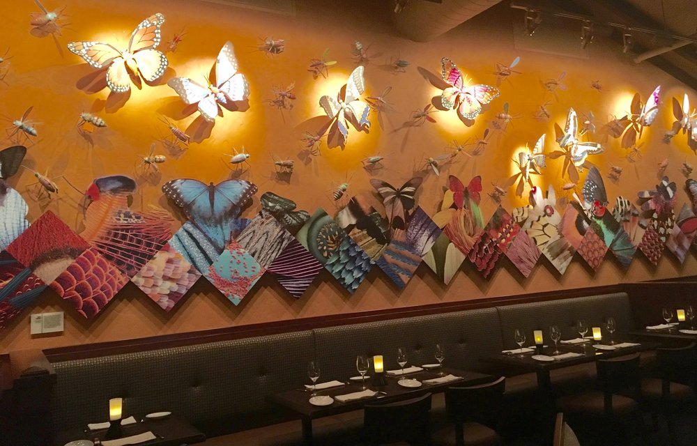 A butterfly collage at Tiffins, which some suspect might tie into the park's Avatar section when it opens in the future