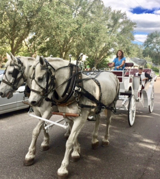 Soul Haven Ranch_horse and buggy_2018.jpg