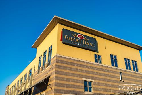 Great Dane, East Madison Wisconsin