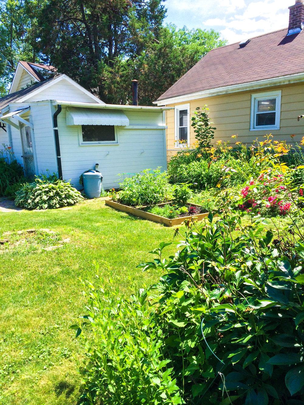 Back yard_full6 - REVISED.jpg