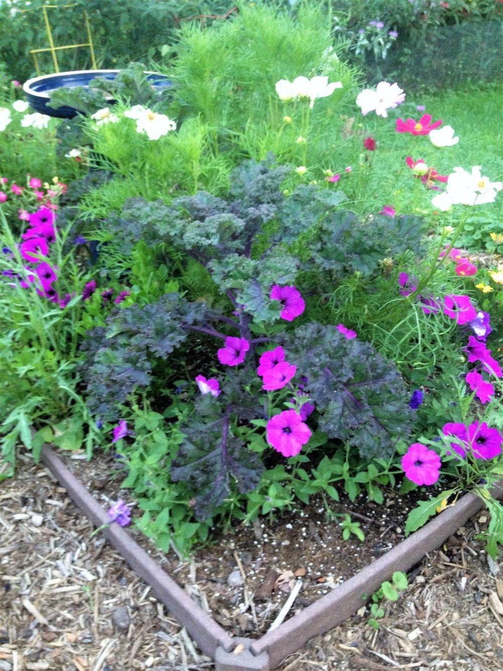 Garden -3.jpg