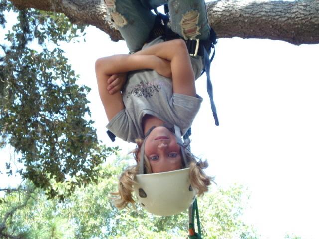 upside_down.jpg