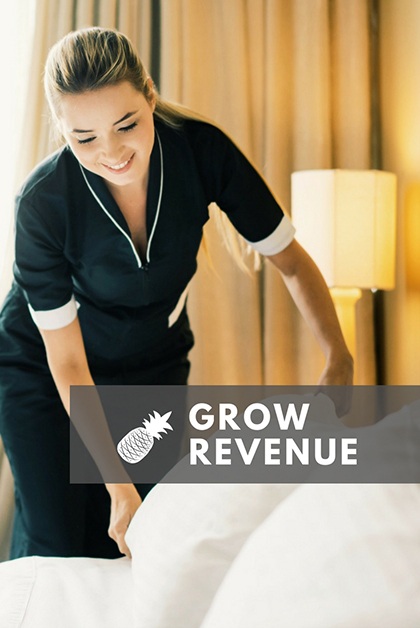 values-revenue
