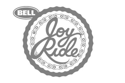 BJR logo grey.jpg