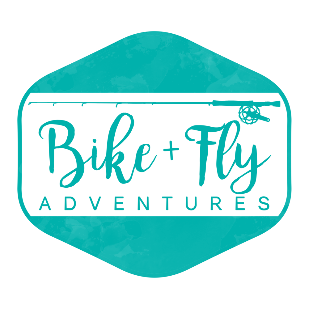 BIKE+FLY LOGO_TEAL.png