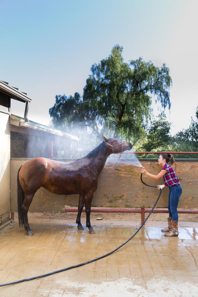 Thacher_HorseFinals-15.JPG