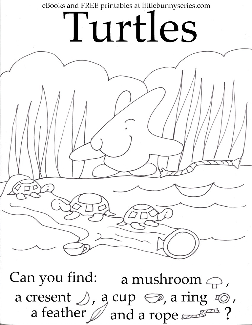 Turtles Seek and Find PDF
