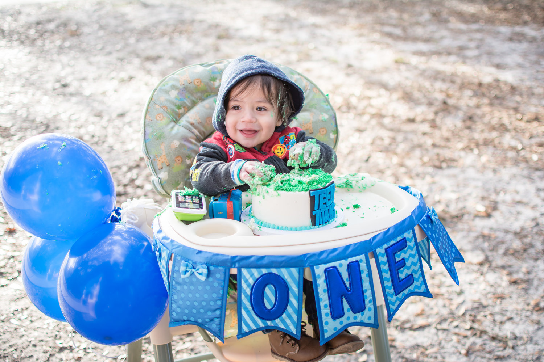 Babys First Birthday And Cake Smash
