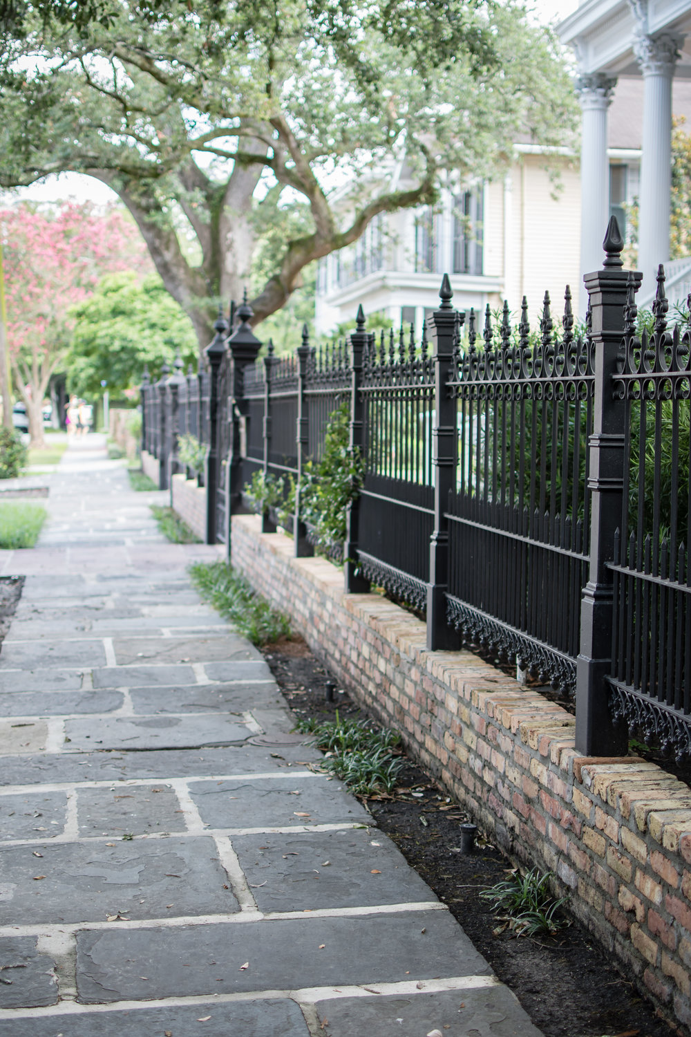 Historic Homes in Garden District, New Orleans