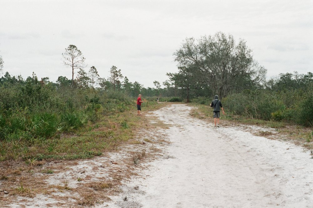 split oak forest in Orlando Florida shot in film Yanitza Ninett photography