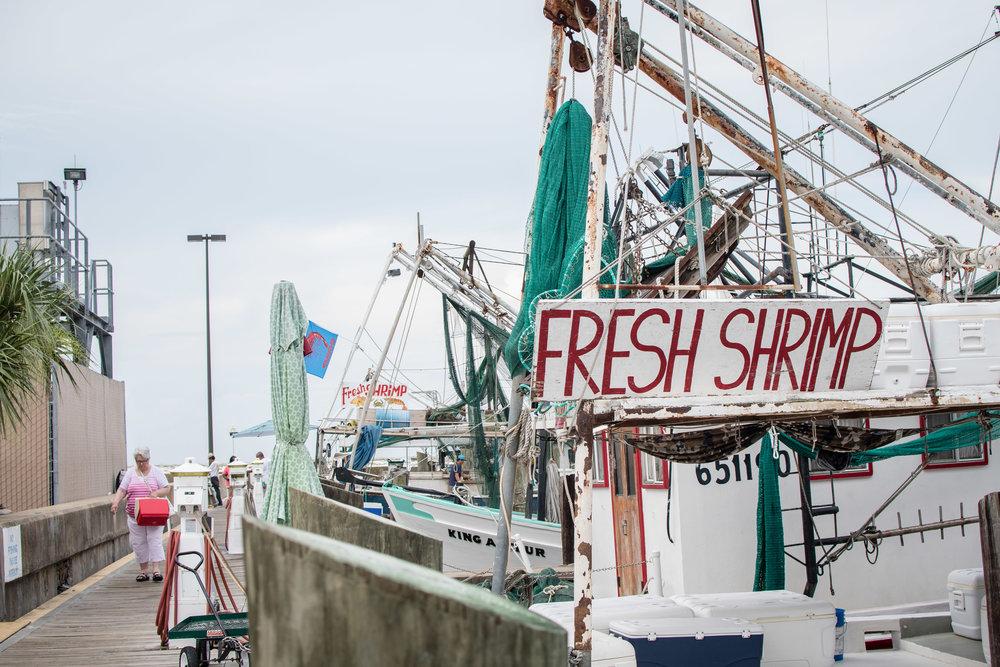 Biloxi Mississippi fishing pier Yanitza Ninett Photography