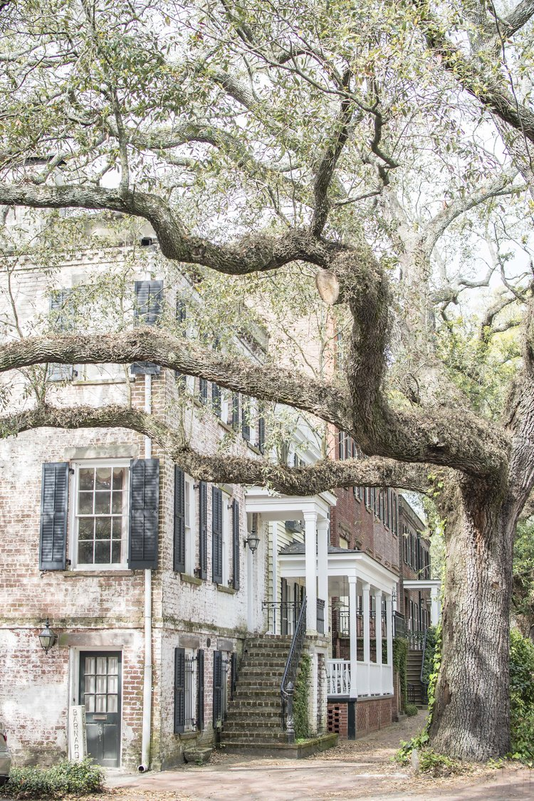Lovely Savannah Historic District - Featuring 1st Place Winning Photo from the Savannah Historic Foundation Photo Contest