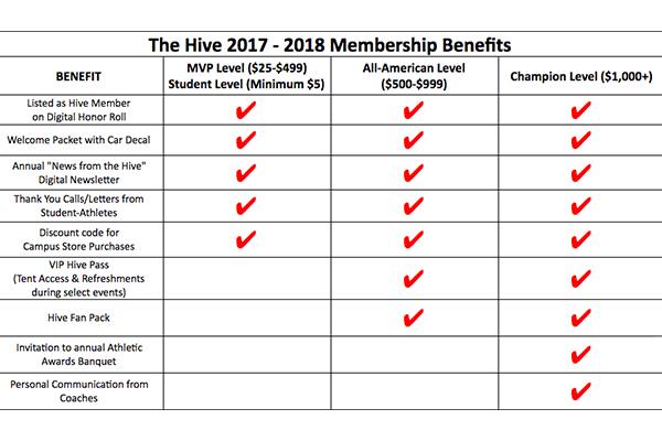 The Hive Chart.jpg