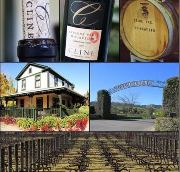 Calling all Zinfandel fans! We are gearing up for a Sunday for the books, as we prepare for the #ZAP event at #ClineCellars August 12th!! Treat yourself with some of wine country's most breathtaking views, delicious zinfandel-friendly bites, and over 50 producers showing off their unique styles of Zinfandel! The word is out, get your tickets today! Click on the link in our bio to learn more!