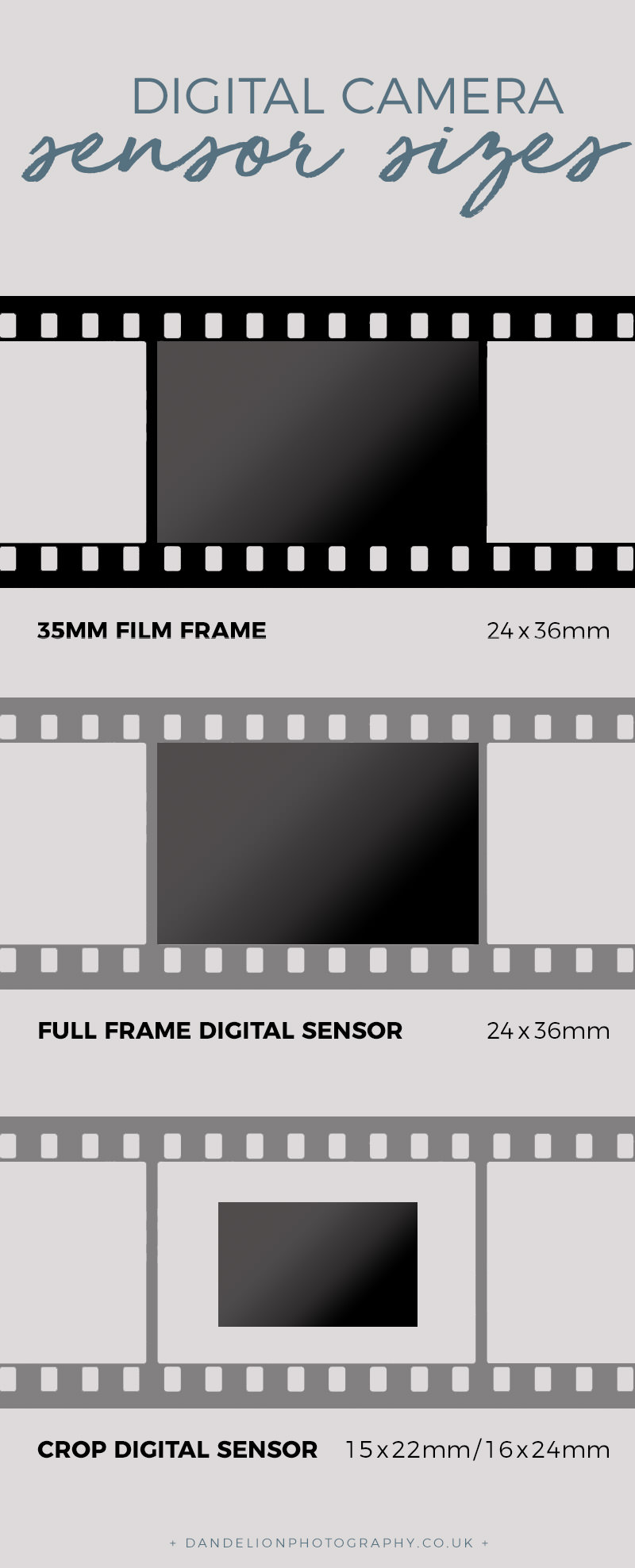 35mm film and sensor diagram.jpg