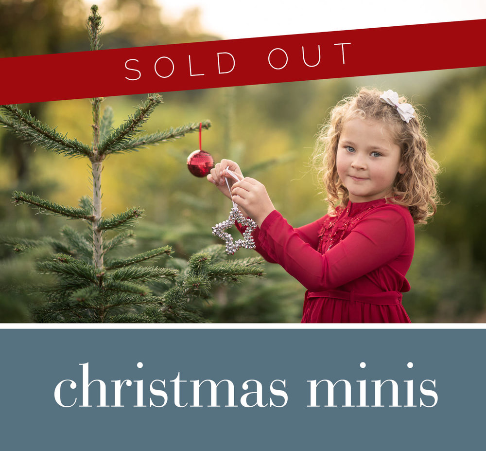 November 2018 - Choose Christmas or neutral theme25 minute mini session packageAfternoon timeslots in November* * SOLD OUT * *