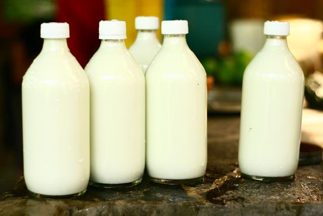 Atitlan Organics Milk