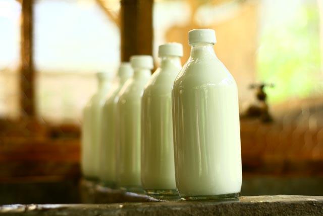Fresh Goat's Milk, Atitlan Organics