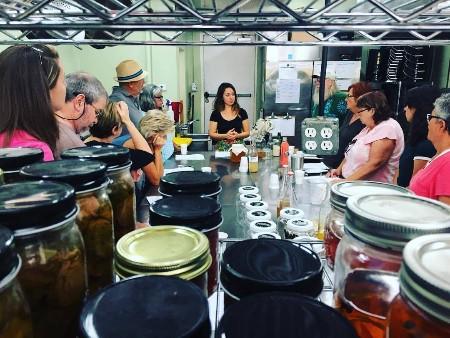 Atitlan Organics blog, St. Pete Ferments