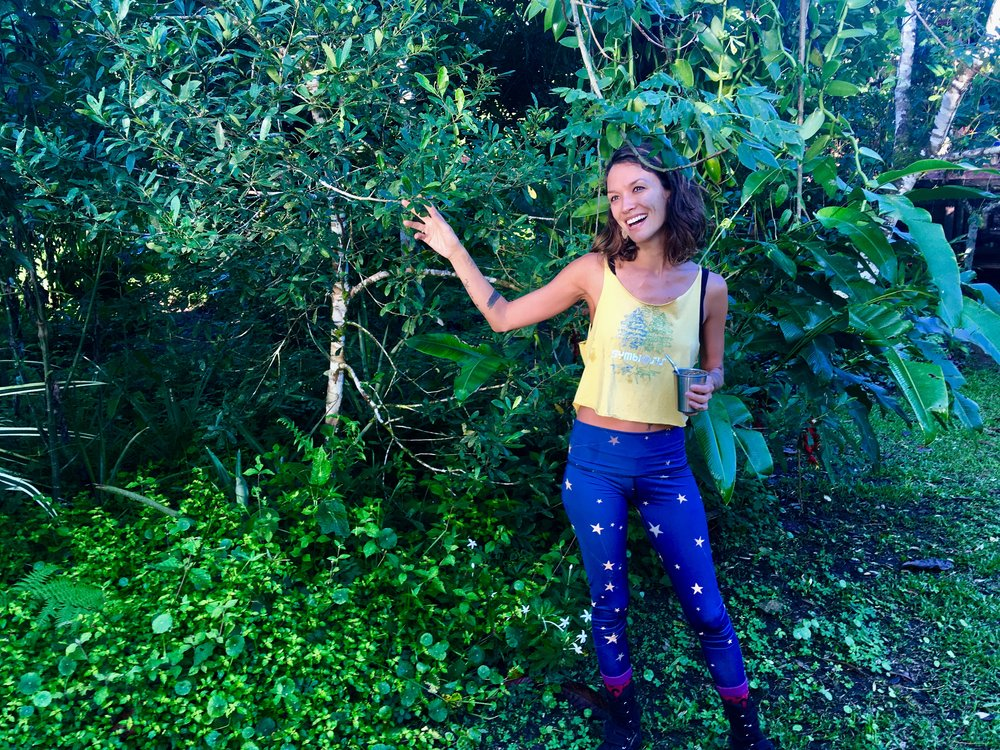 Sarah Wu, Lead facilitator for Permaculture for the Herbalist's Path: a 72+ Permaculture Design Certification course and 80+ hour Herbal Studies course September 23 - October 18, 2019 at Lake Atitlan, Guatemala