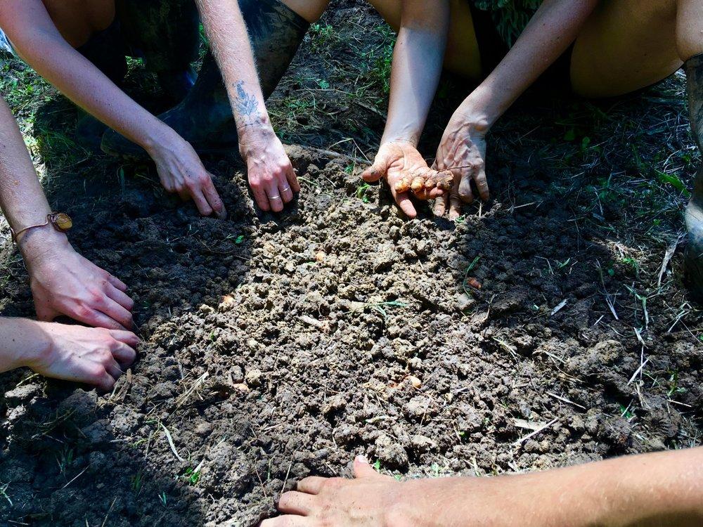 hands in soil - Edited.jpg