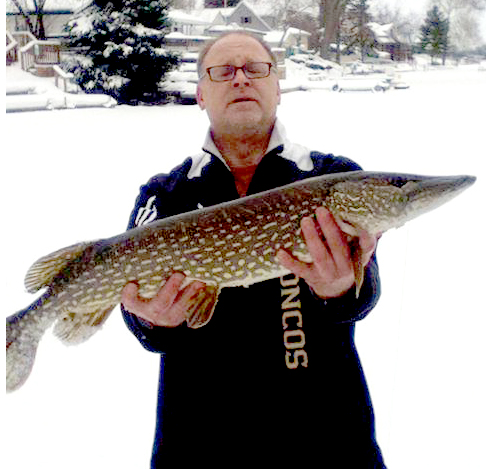 Walleye Winter 2014.jpg