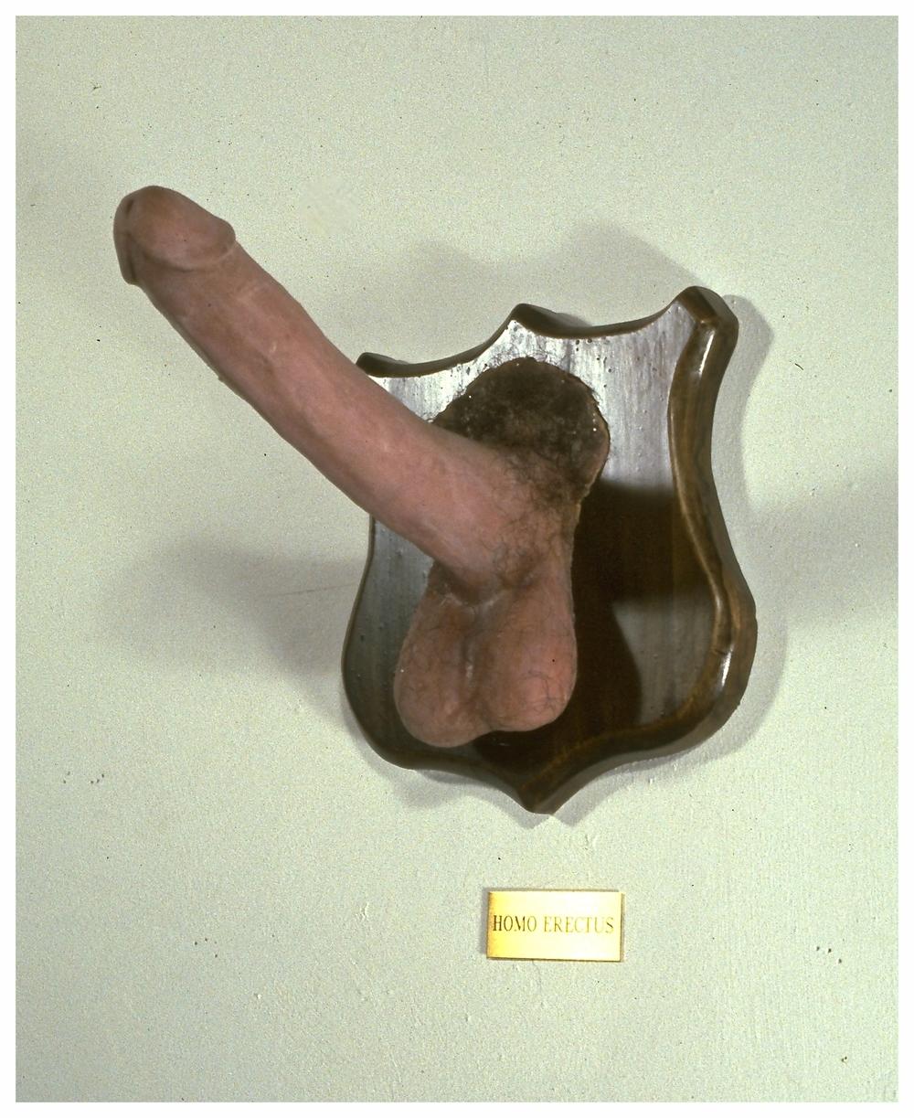 004 Homo Erectus