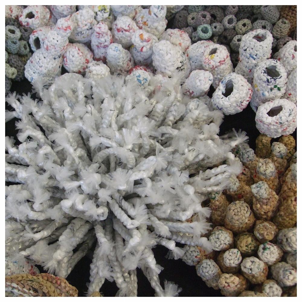 Bag Coral (detail)