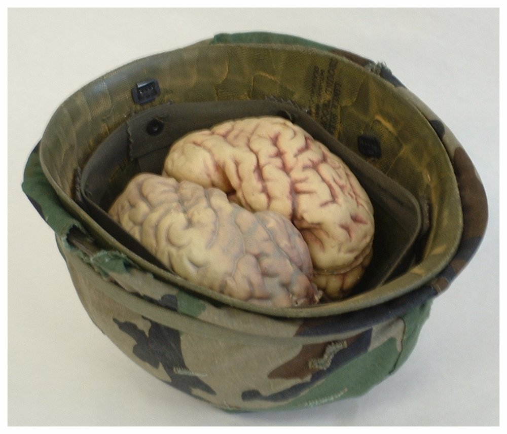 Bucket O' Brains  11x9x9