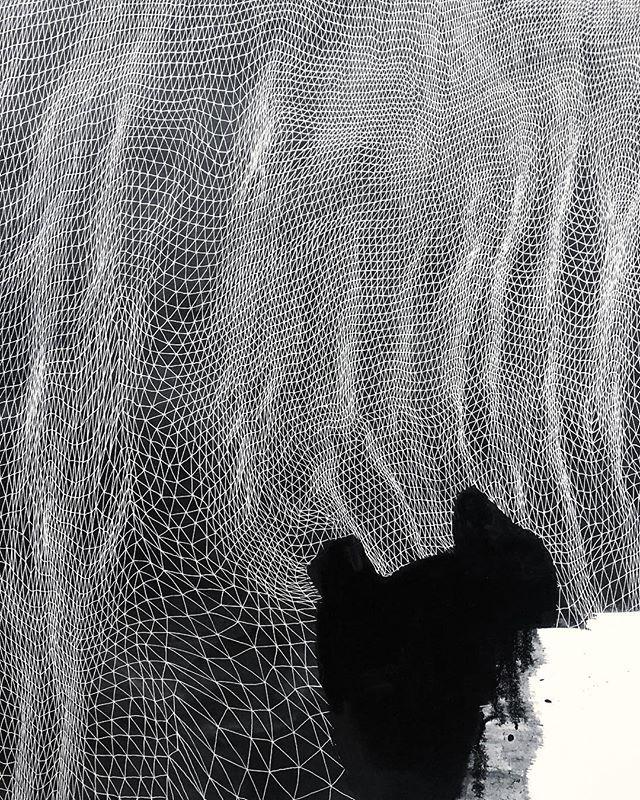 Almost done #tessellation #tessellate #triangle #art #brooklynart #artist #milkyway #firmament #stars #brooklynartist #nycart #nycartist #williamsburgartist #abstractart #abstractartpainting #abstractartist #lines #line #lineart #blackandwhiteart #mountains #terrain #diamond#instaart #instagood #artforsale #artforsalebyartist#inkwash#indiaink#ink