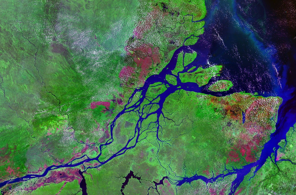 Mouths_of_amazon_geocover_1990.png