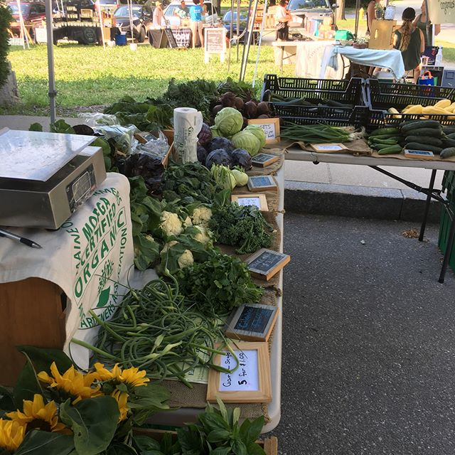 Thanks to all who braved the heat at @yarmouthfarmersmarket this afternoon. Plenty more summer veggies coming in future weeks... though in the meantime we're all horizontal like Calvin here, waiting for the heat to break. #yarmouthfarmersmarket #andrewsfarm #julyinmaine