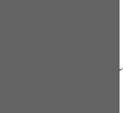 Boston-Globe-Logo-gray.png