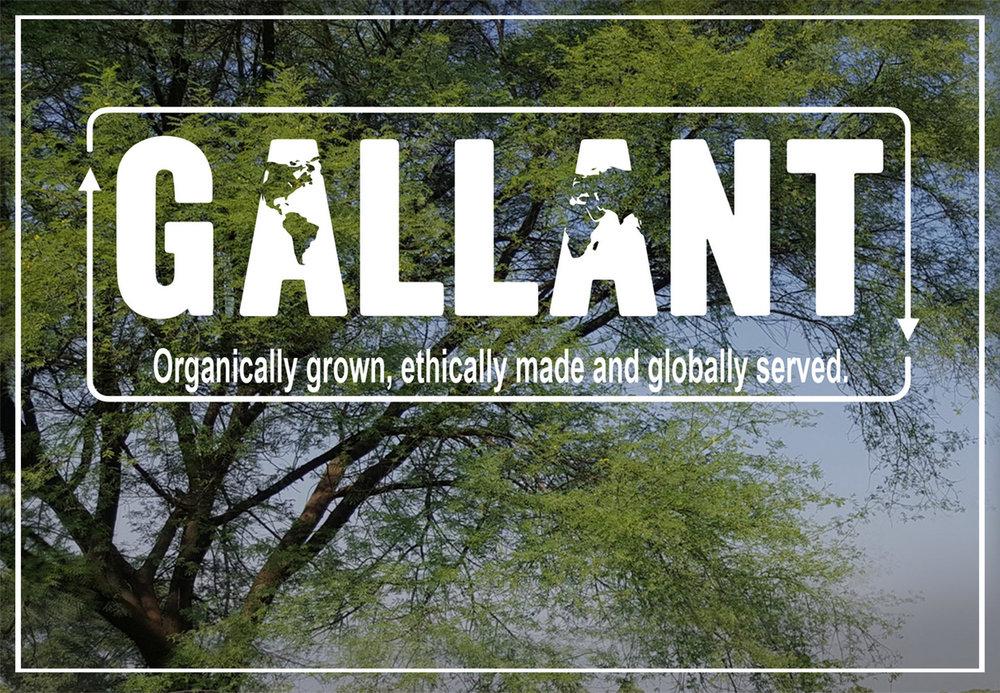 Gallant BANNER  1.jpg