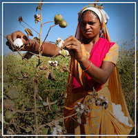 Fair Trade Farmers, what is fair trade certified