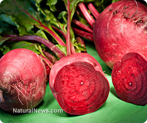 Beets_Vegetable