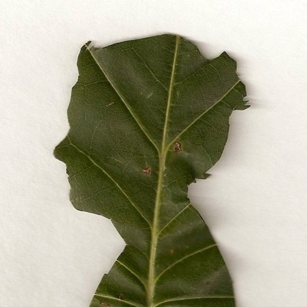 jenny-lee-fowler-leaf
